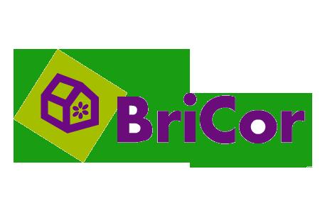 _ Bricor